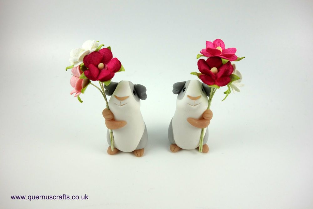 Little Blossom Guinea Pig (2 available)