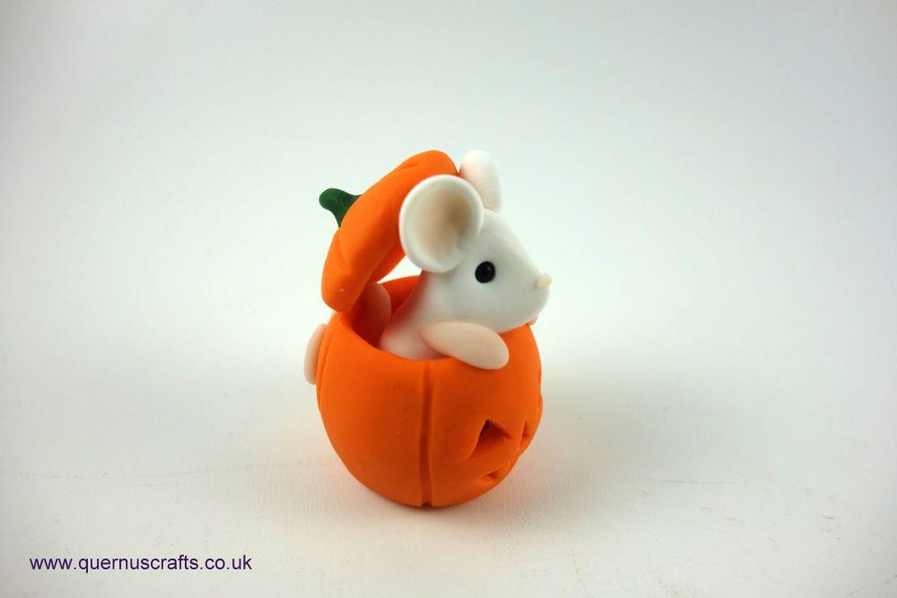 Little White Mouse in Pumpkin