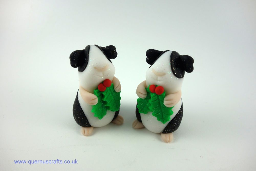 Little Holly Guinea Pig (2 available)