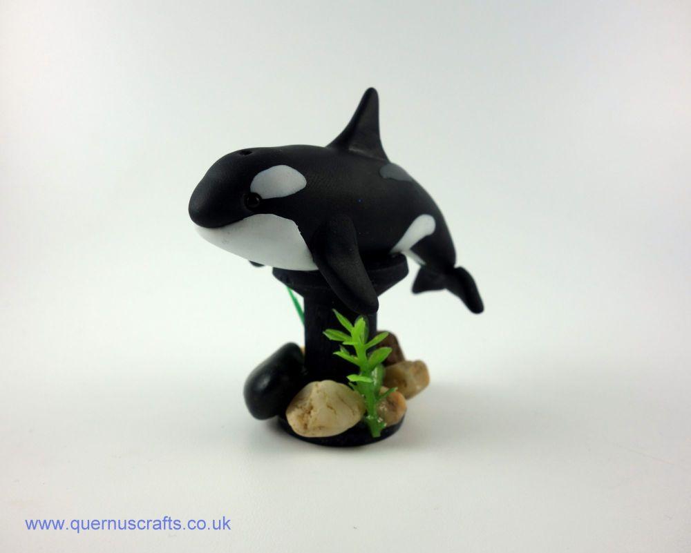 Wee Orca