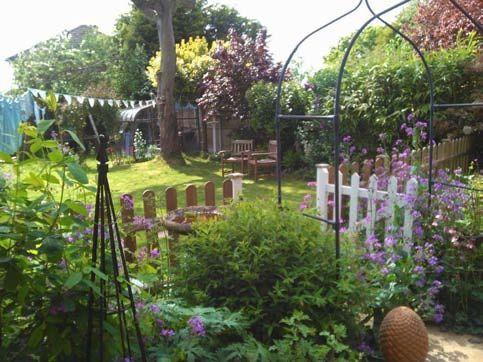 My Bird Filled Garden