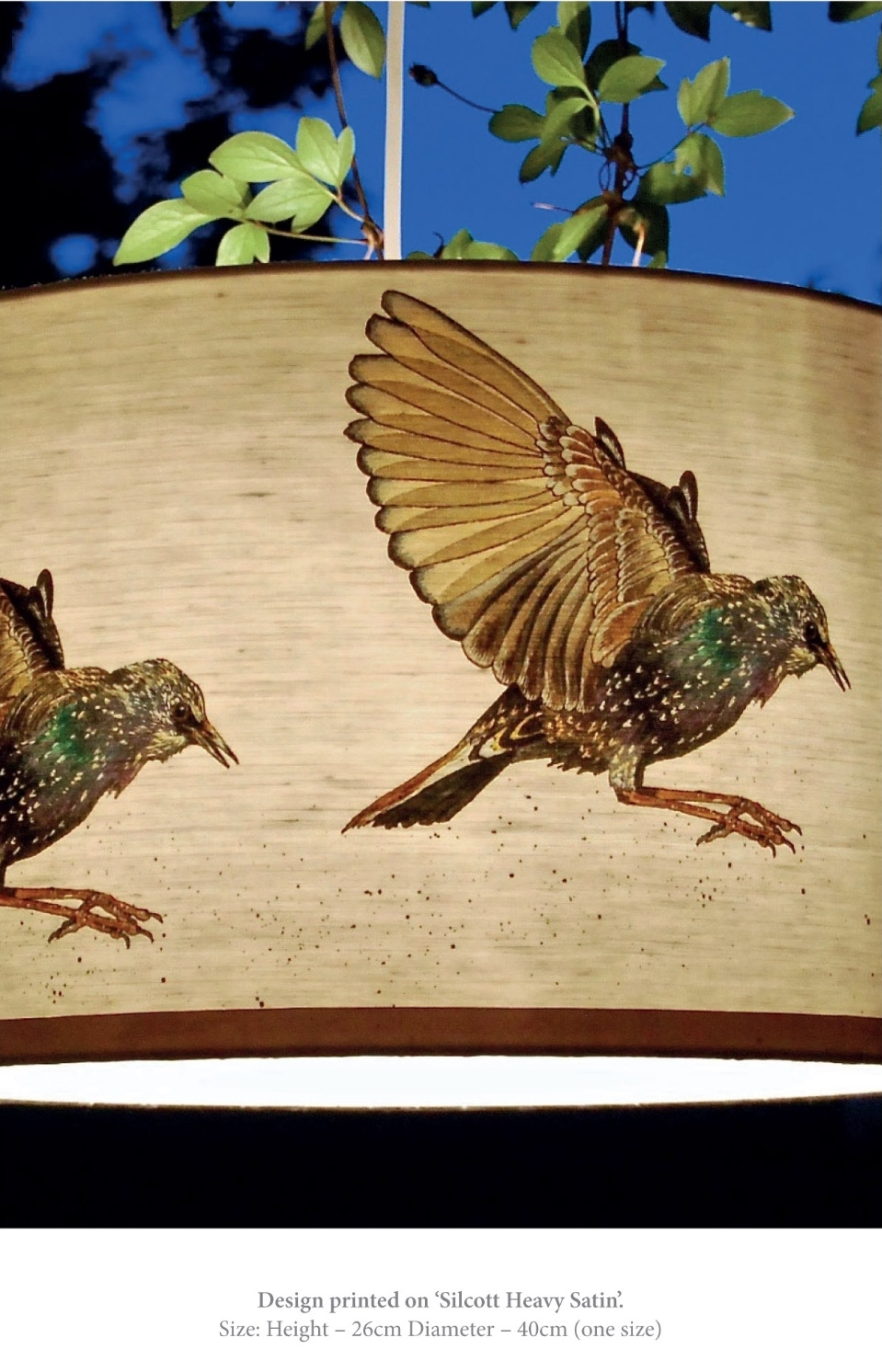 starling bird lampshade