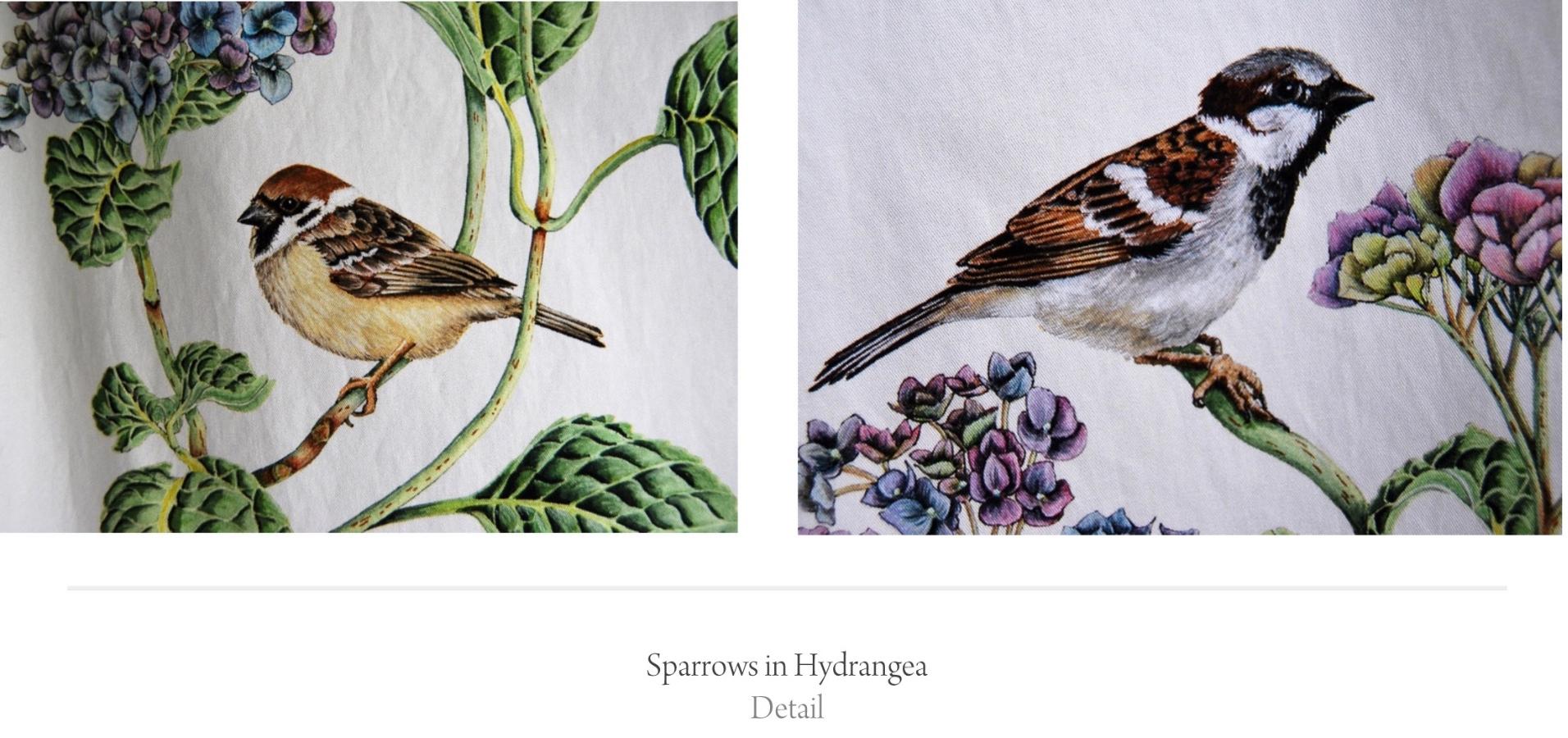 sparrows detail