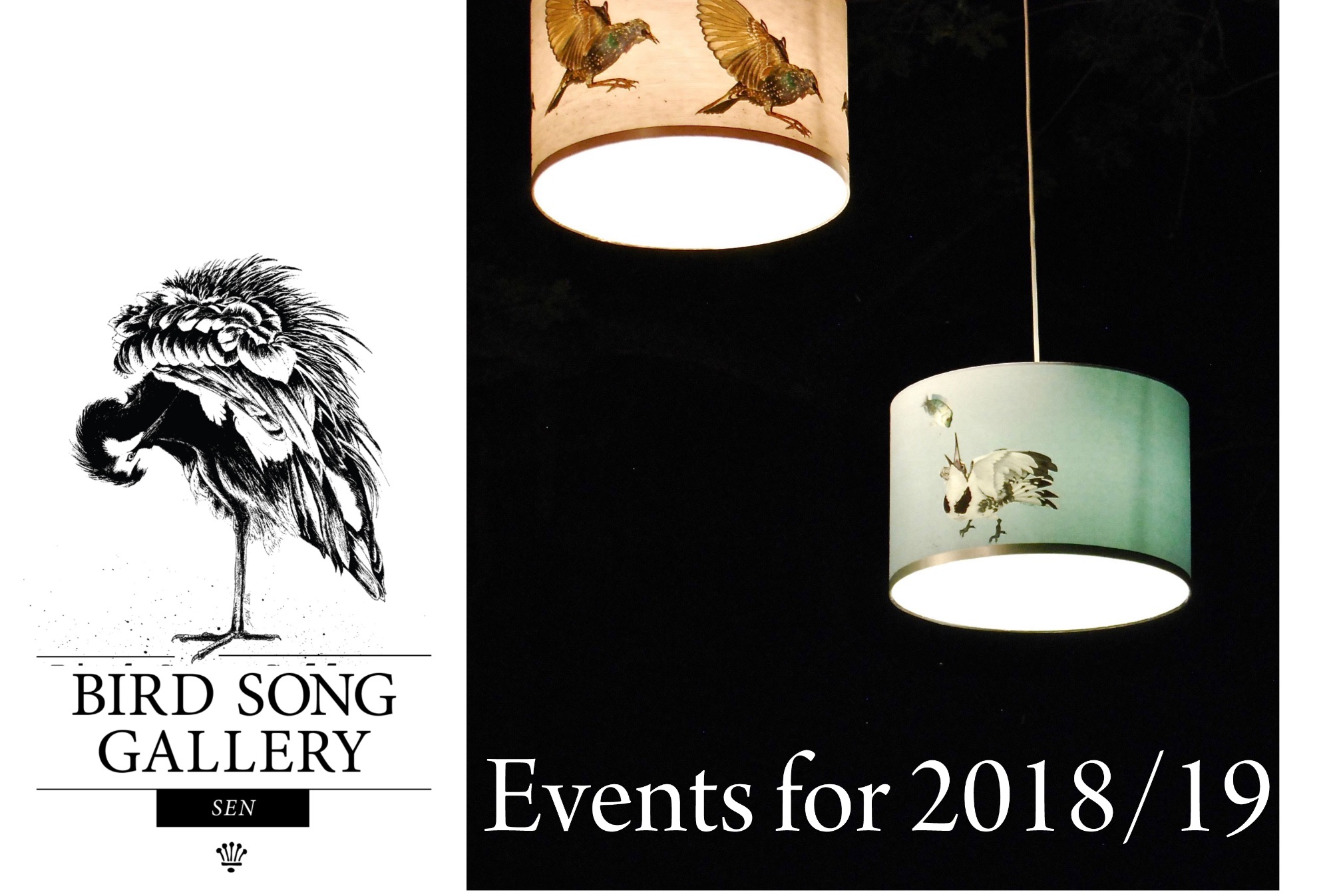 Events Bird Song Gallery