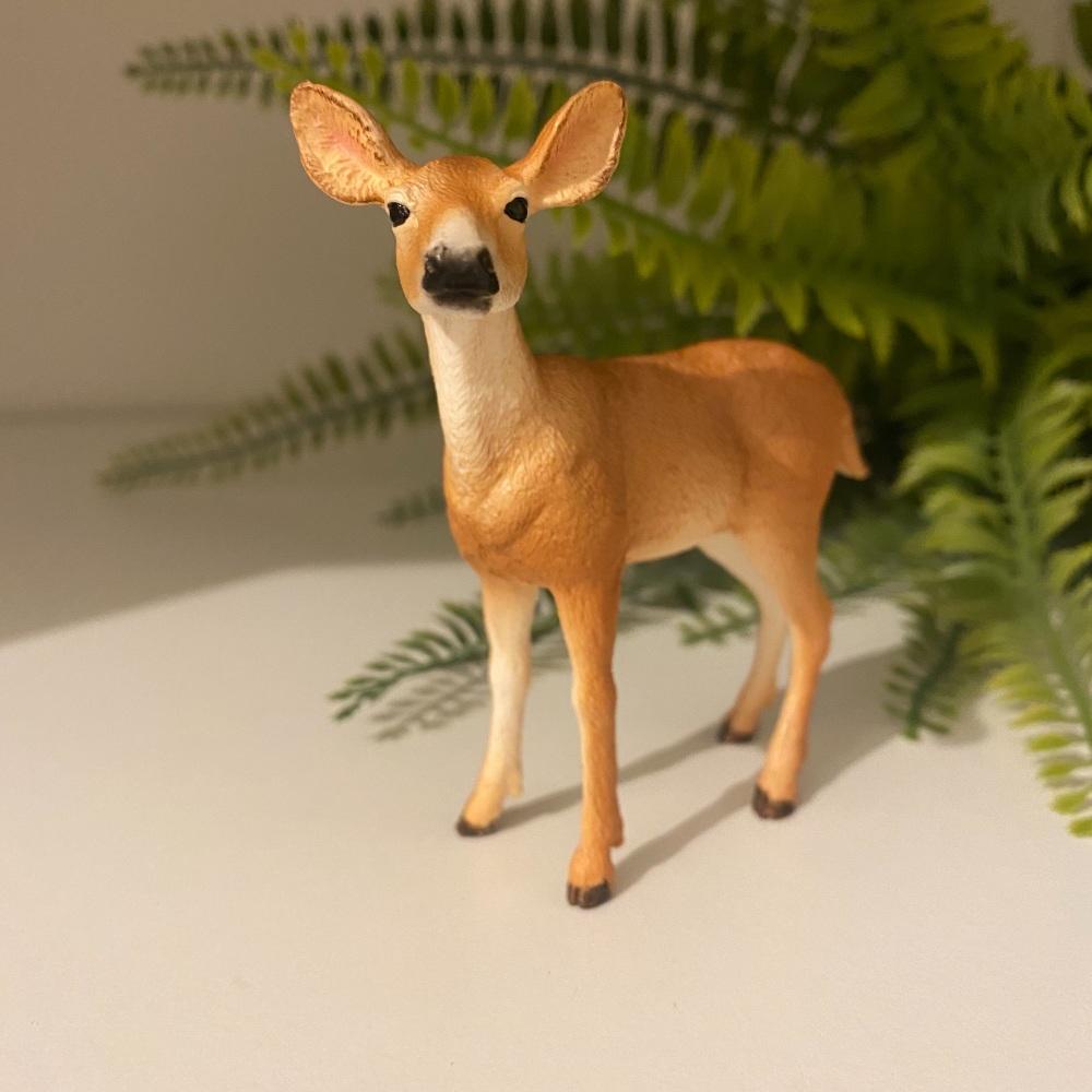 White Tailed Deer Doe