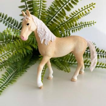 Akhal-teke Stallion - Horse