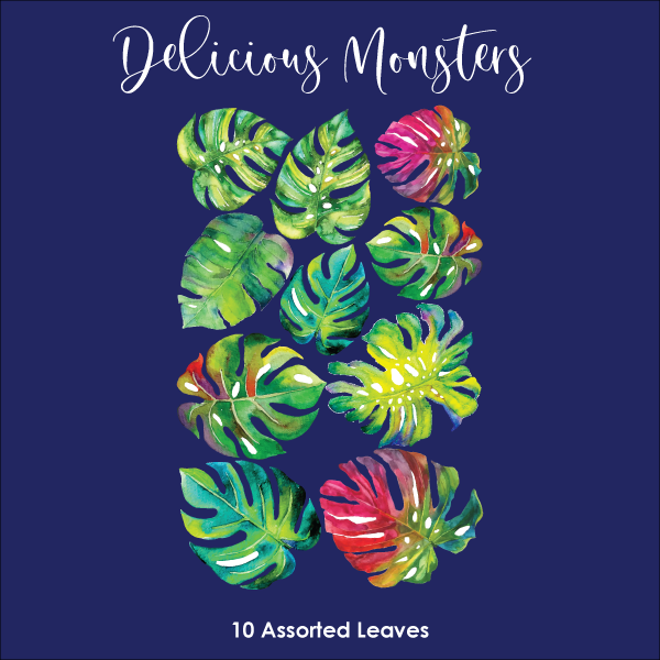 Crystal Candy Edible Wafer Collection - Delicious Monster Leaves