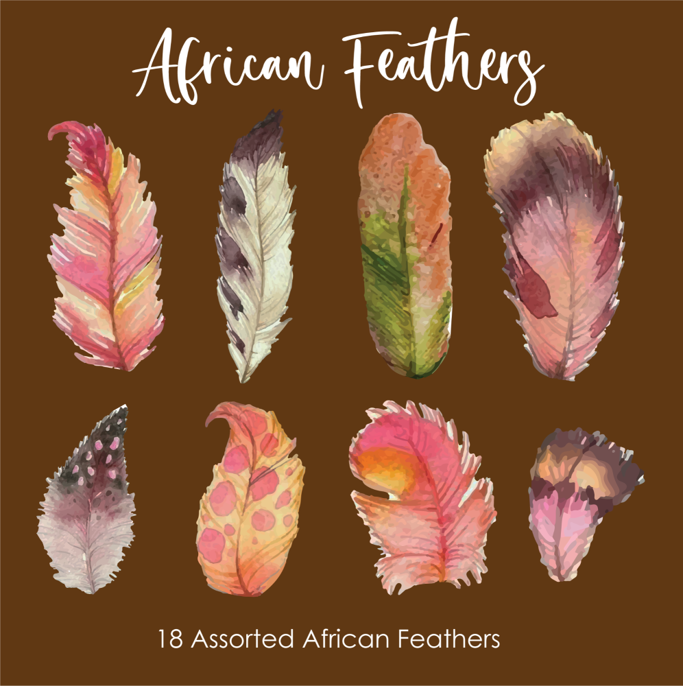 Crystal Candy Ellen Collection – African Feathers