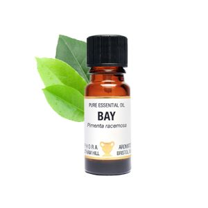 Essential Oil - Bay