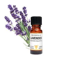 Essential Oil - Lavender