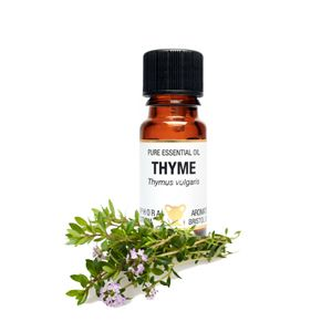 Essential Oil - Thyme