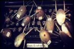 Spoon Bugs