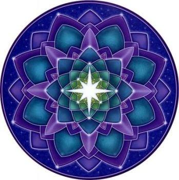 Window Sticker - Star Seed