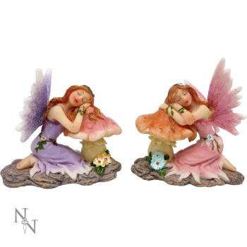 Delicate Dreams Fairy Mushroom / Toadstool