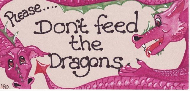 Witchy Sign - Please.... Dont Feed The Dragons