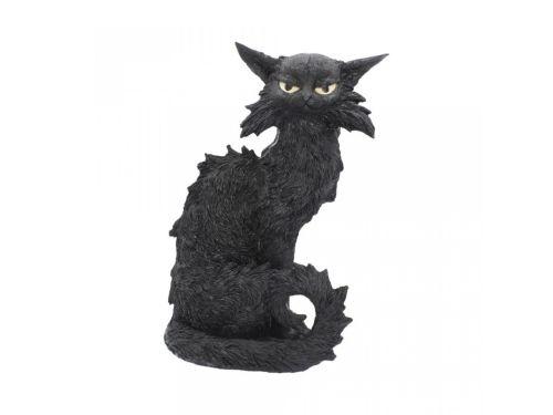 Salem Cat