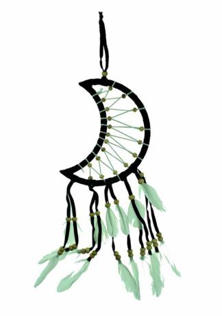 Crescent Moon Dreamcatcher 17cm