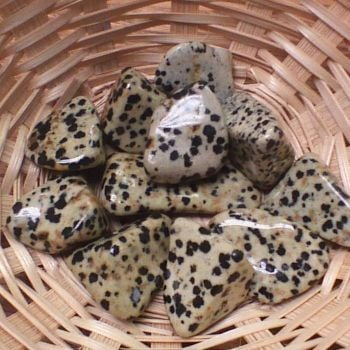 Tumblestone - Dalmation Stone,