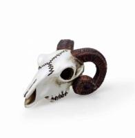 Miniature Ram Skull