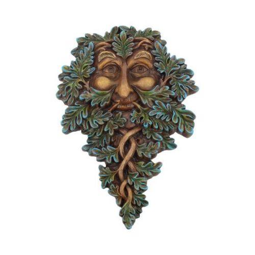 Oak Guardian 19.5cm