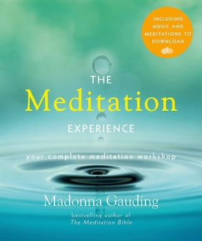 The Meditation Experience by Madonna Gauding