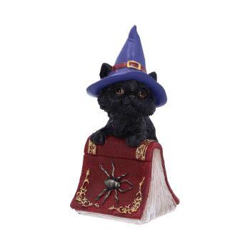 Hocus - Black Cat - 12.7cm