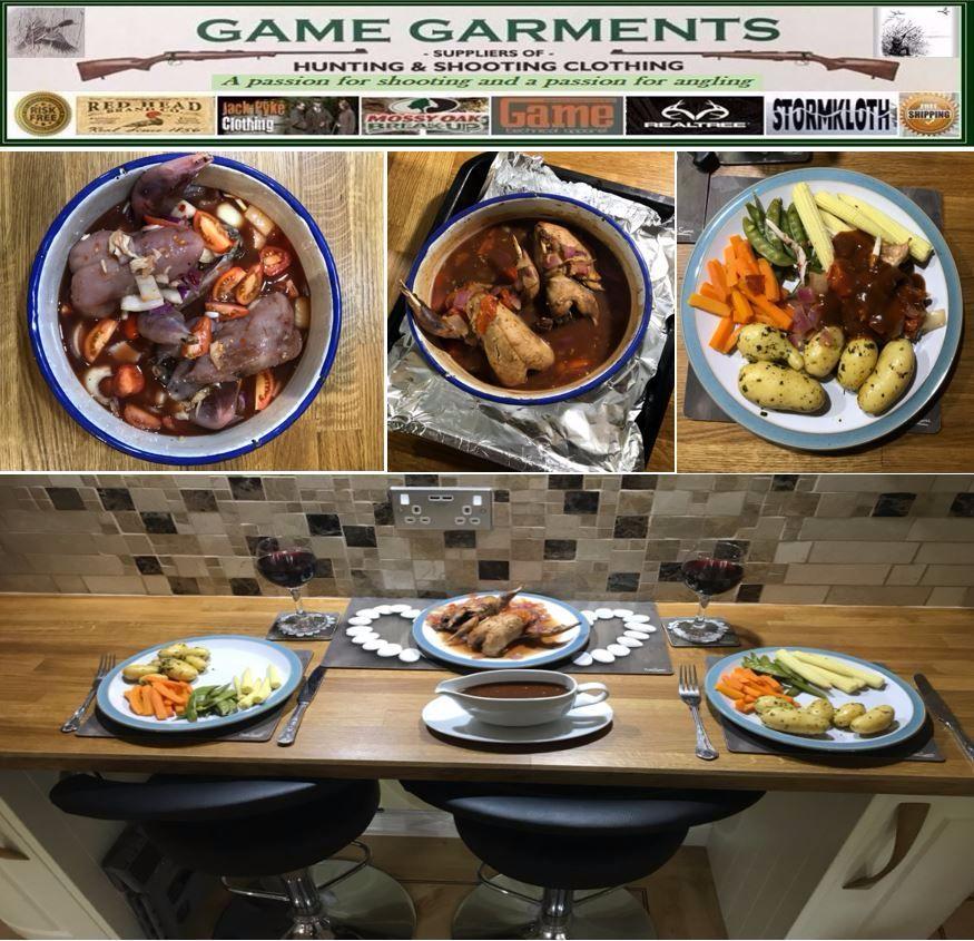 gamegarments dish