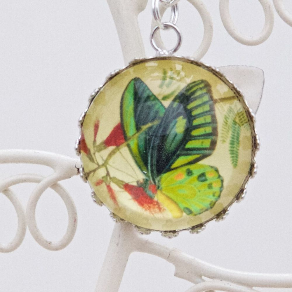 Priamus butterfly deep round pendant necklace