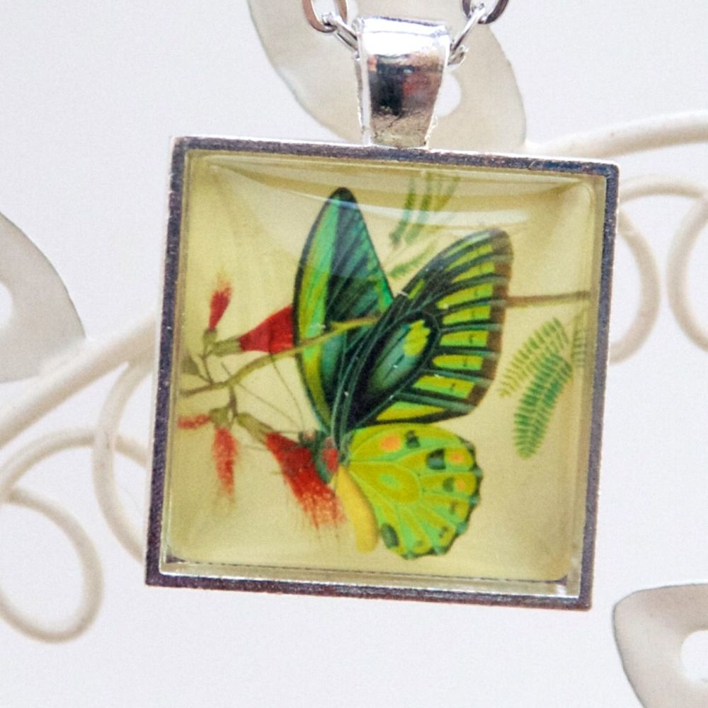 Priamus butterfly square pendant necklace