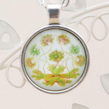 Ernst Haeckel liverwort pendant