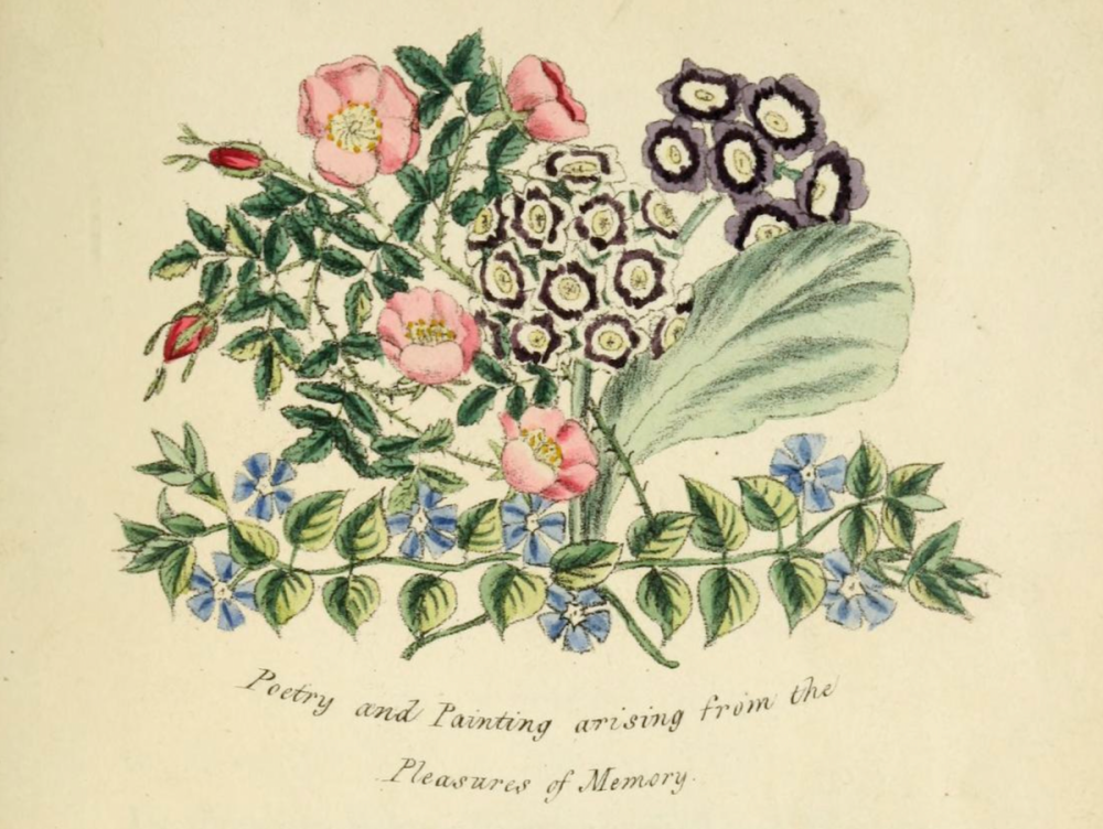 Poetry & Painting - Floral Emblems