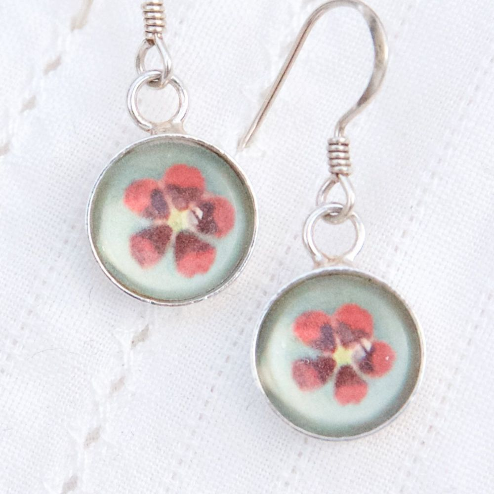 Primula sinensis, deep glass earrings