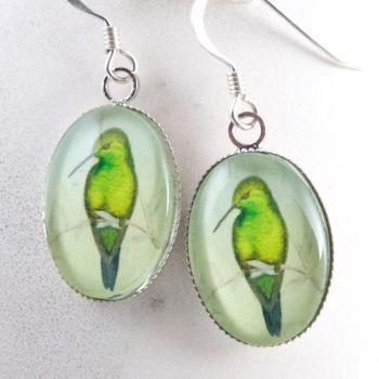 John Gould hummingbird earrings