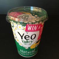 Yoghurt -  Natural Organic