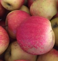 4 medium organic Apples approximately 550g