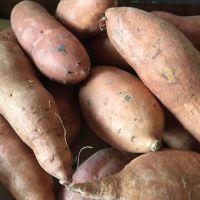 Organic Sweet potatoes -1kg