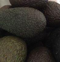 3 Organic Avocados