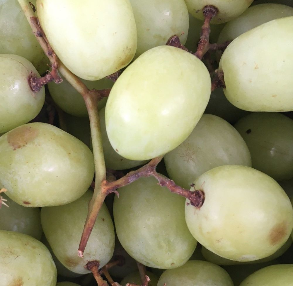 Organic grapes - 300g