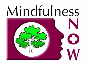 Mindfulness NOW Logo (2)