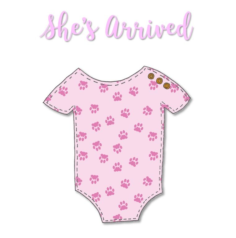 New Baby Cards - Patterned Baby Grow - She's Arrived