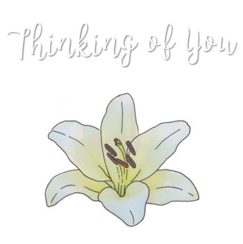 Thinking of you Card - Love Lilies Collection