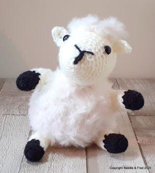 Shona the Sheep