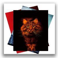 Cat Art - A4/A3 Prints & Canvases
