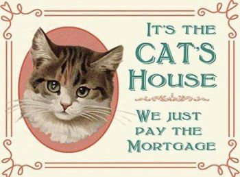 It's The Cat's House We Just Pay The Mortgage - Metal Wall Sign