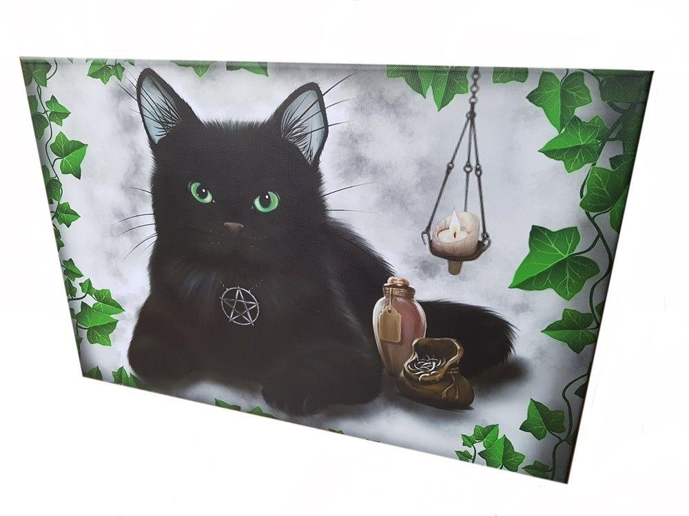 Black Cat & Pentagram Canvas Print - 60cm x 40cm
