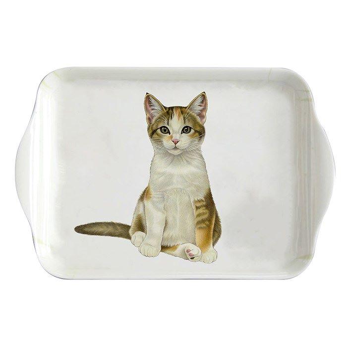 Small Tea Tray - Tabby & White Kitten