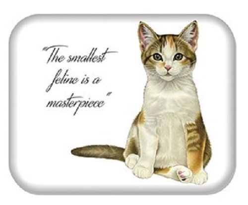 Kitten Quotes Magnet - The smallest feline is a masterpiece