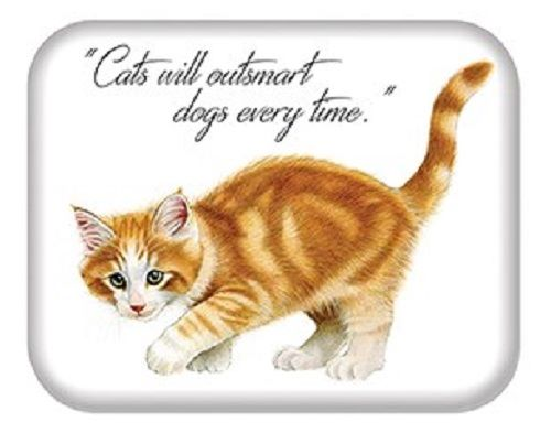 Kitten Quotes Magnet -  Cats will outsmart dogs every time