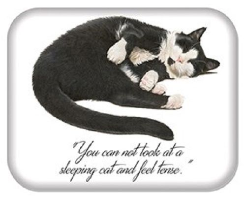 Kitten Quotes Magnet -  You cannot look at a sleeping cat and feel tense