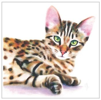 Greetings Card - Bengal Cat